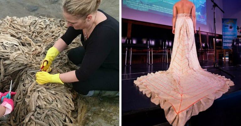 экология и мода