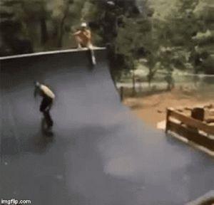 парень на скейтборде и собака