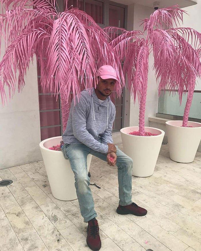 парень и розовые растения
