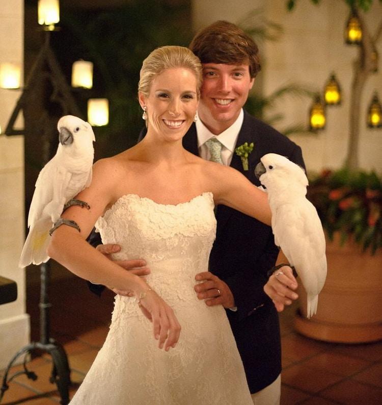 какаду сидят на руках у невесты