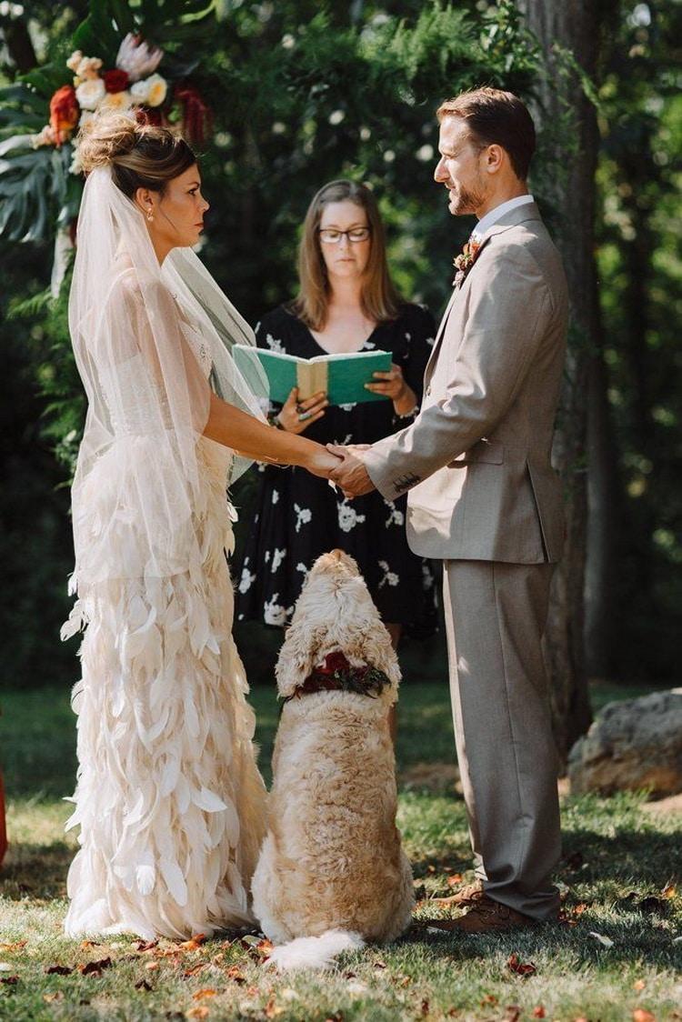 невеста жених бракосочетание и собака