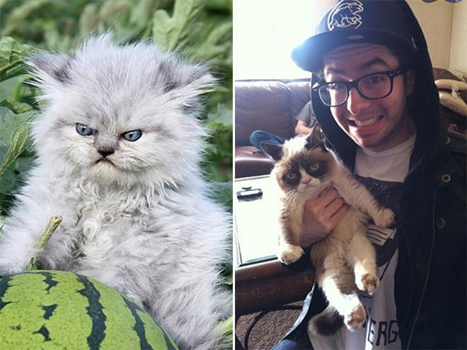 кот с арбузом и котенок на руках у парня