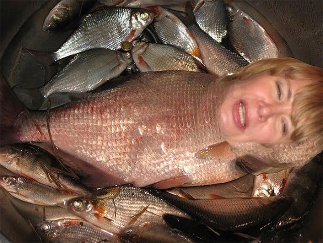 женщина-рыба