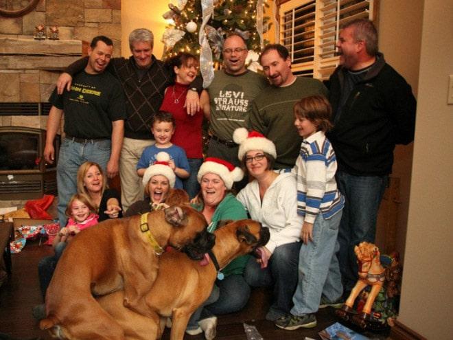 вся семья и собаки
