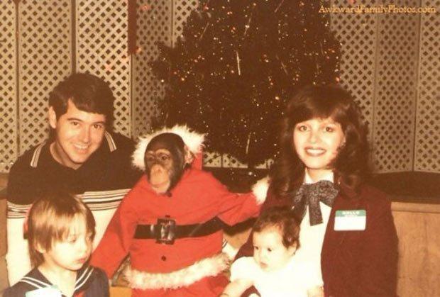 10 весёлых семейств, которые решили провести новогоднюю фотосессию... рис 9