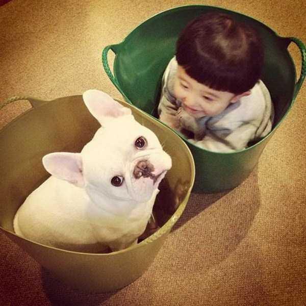 мальчик и собака сидят в ведре