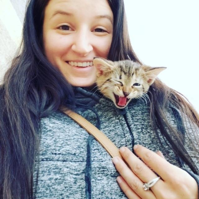 котенок с хозяйкой