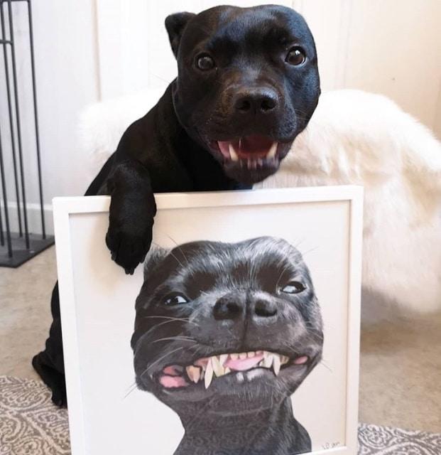 собака с картиной