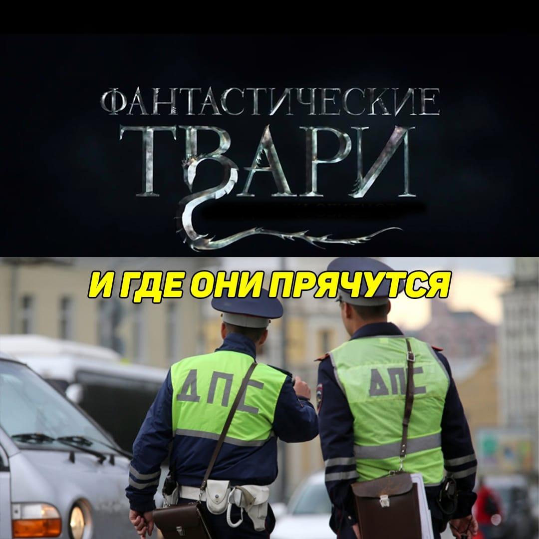 сотрудники дпс