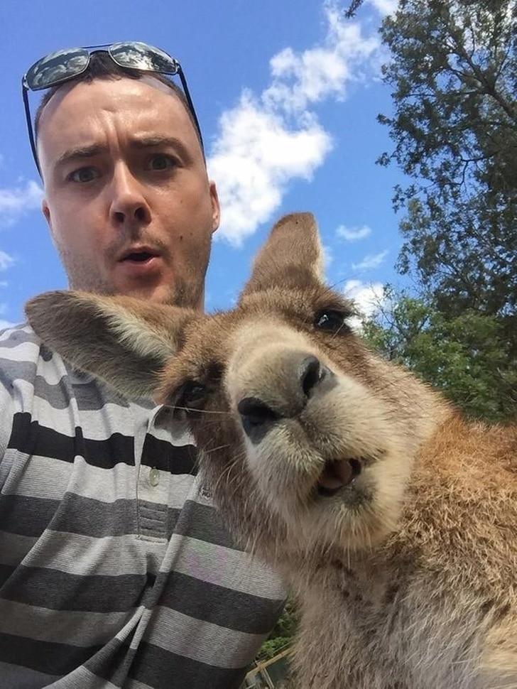 селфи парня с животным
