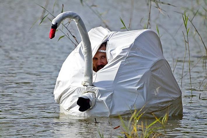 Фотограф в костюме лебедя на озере