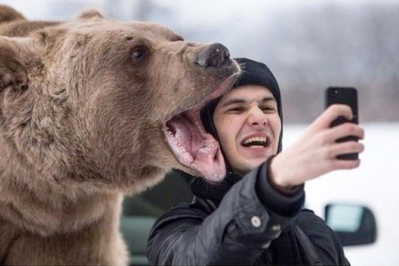 парень делает селфи с медведем