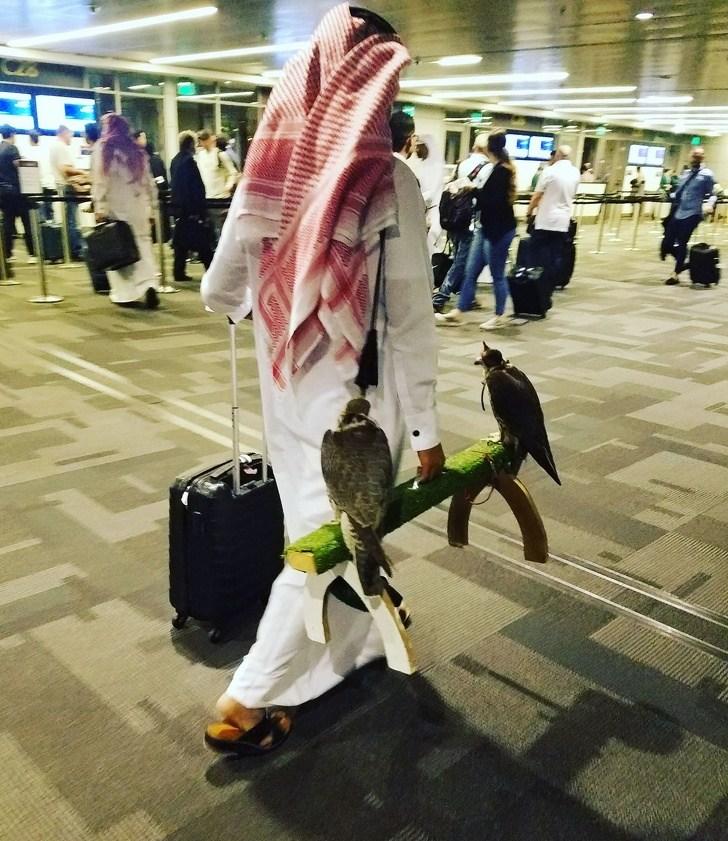 араб с чемоданом и соколами