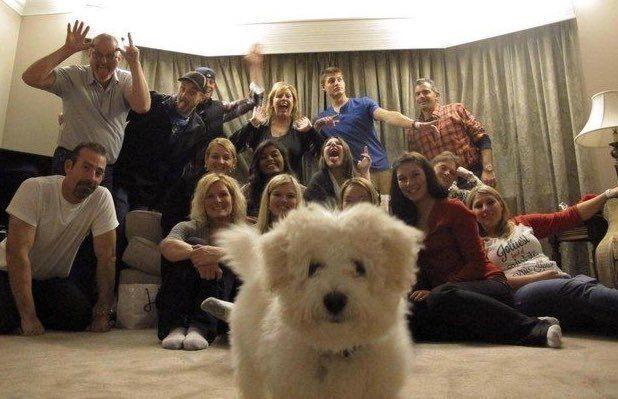 коллективный снимок и собака