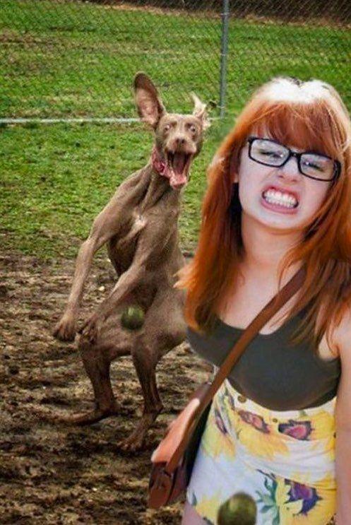 рыжеволосая девушка в очках и собака