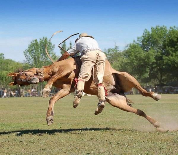 мужчина падает с лошади