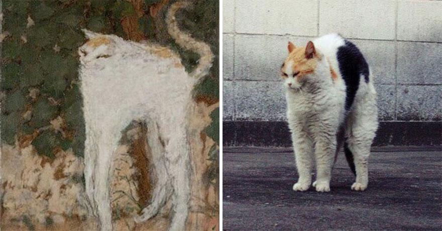 пьер боннар белый кот