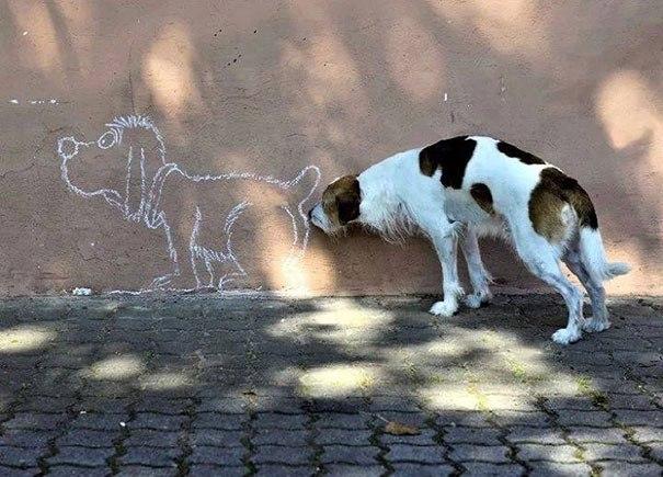 пес и рисунок на стене