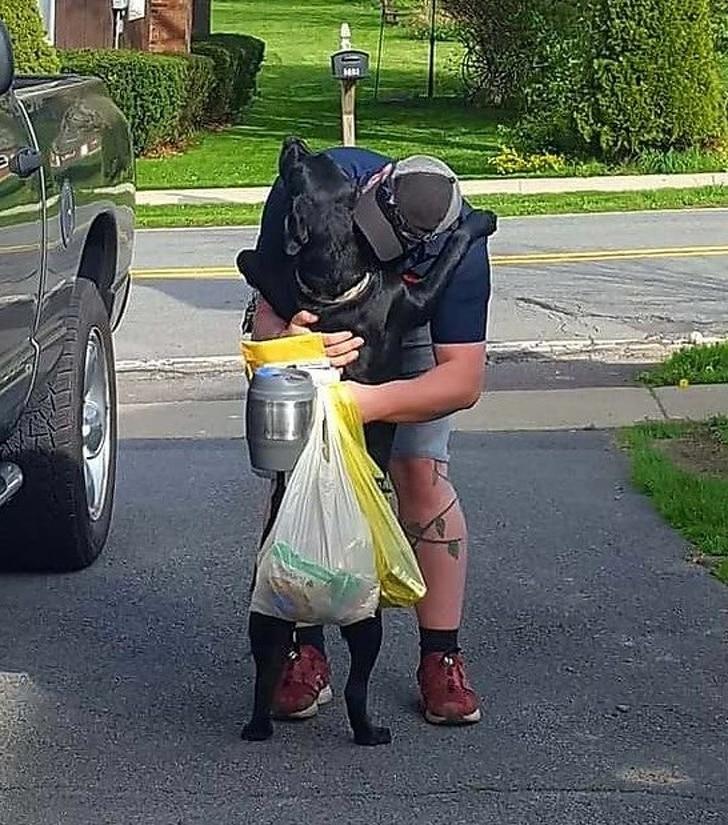 собака обнимает хозяина