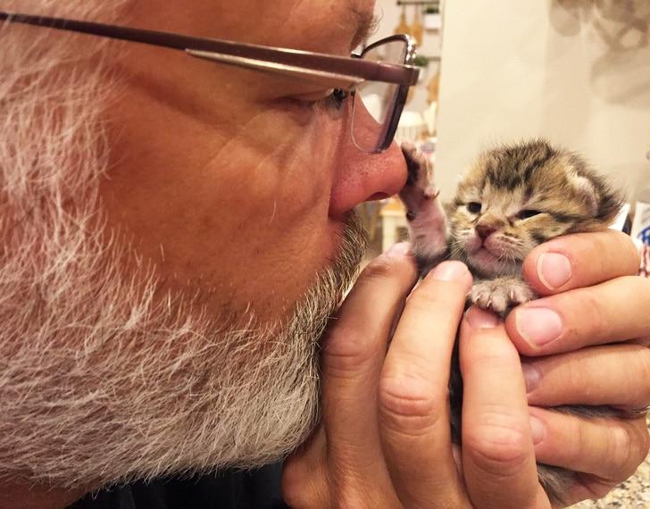 седой мужчина с котенком в руках
