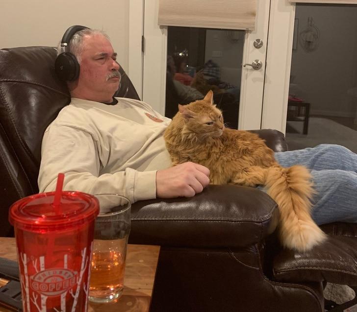 мужчина в наушниках с рыжим котом на коленях