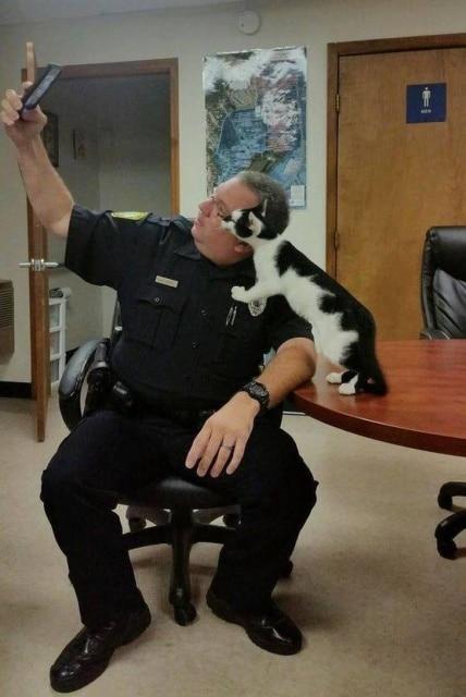 мужчина делает селфи с котом