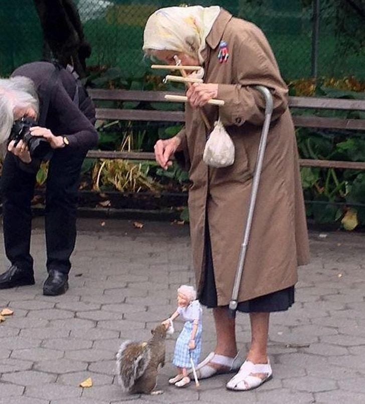 старушка и белка