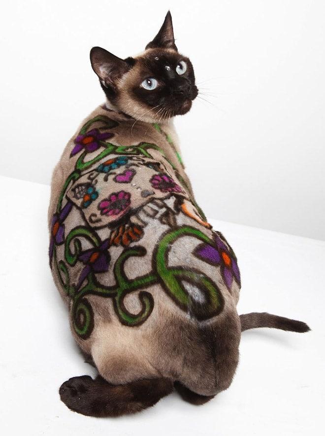 кот с рисунком на шерсти