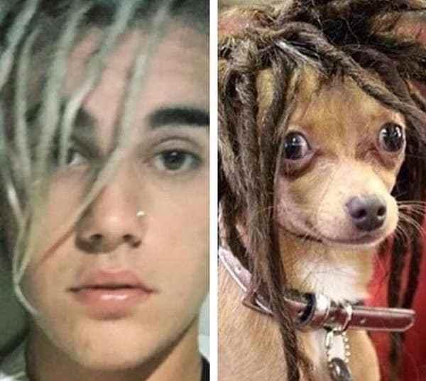 джастин бибер и собака
