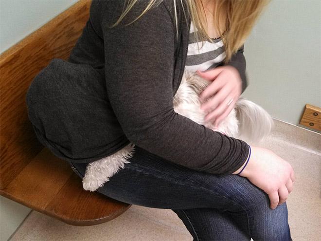 пес обнимается с хозяйкой