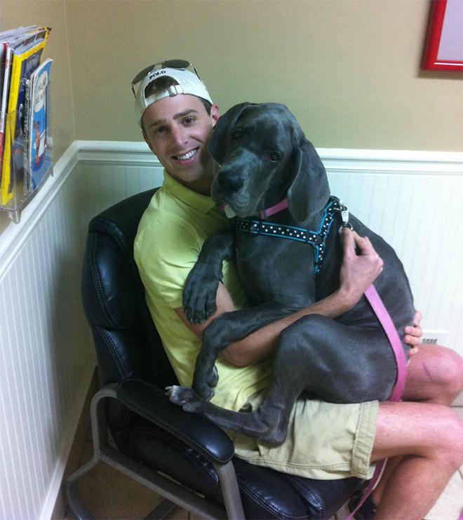 пес и его хозяин у ветеринара