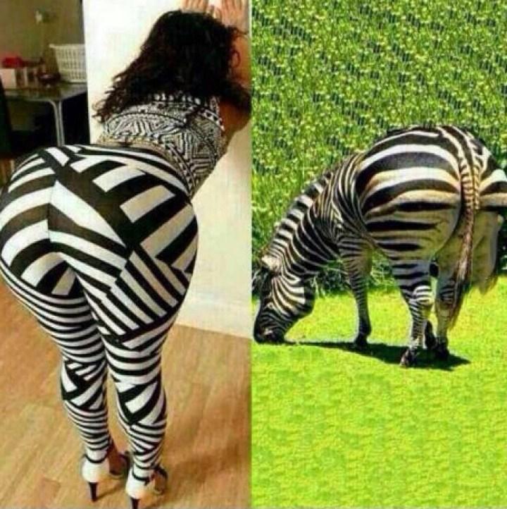 девушка в лосинах и зебра