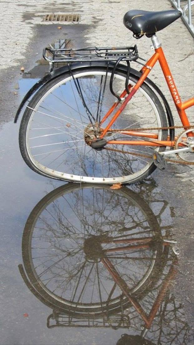 велосипед в луже
