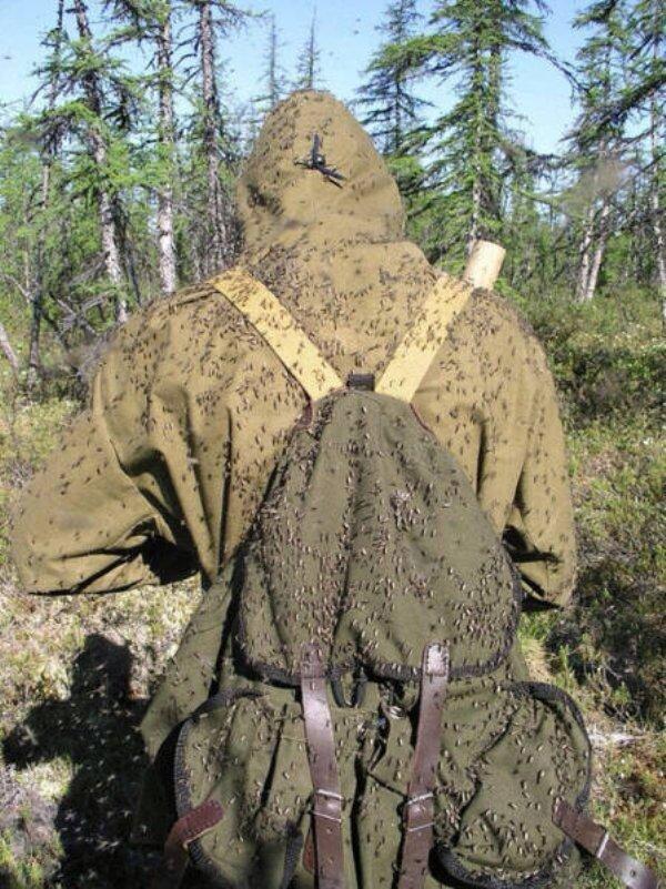 мужчина с рюкзаком на спине в лесу