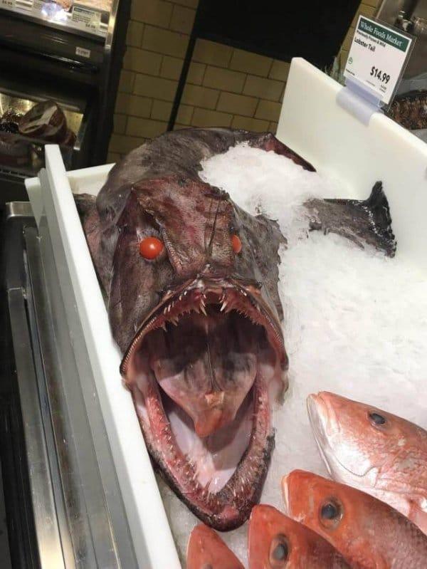 рыба с красными глазами на витрине