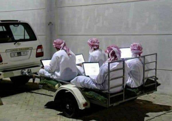прицеп с арабами