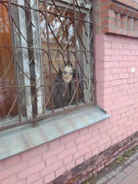 кукла в окне