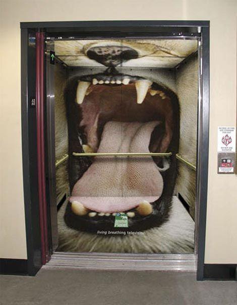лифт с фото пасти льва