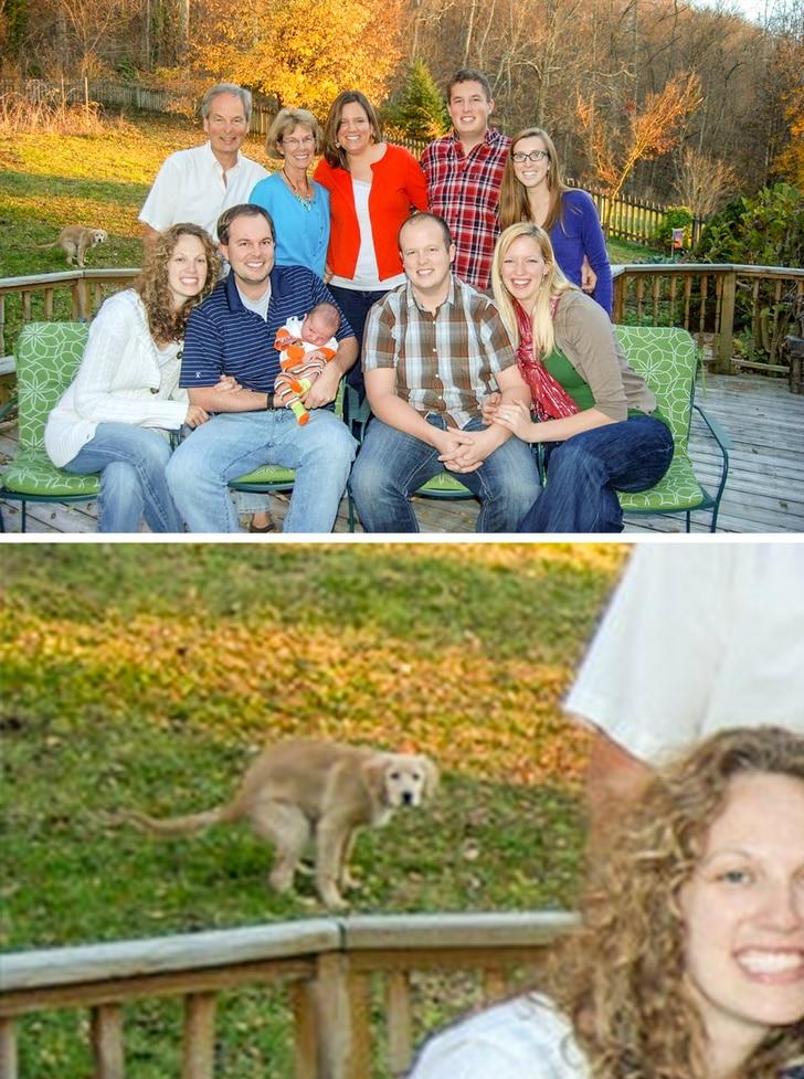 Задний план решает: 15 фото, которые обернулись настоящими фейлами Приколы,Фото,задний план,подборка фото,смешное,фото приколы