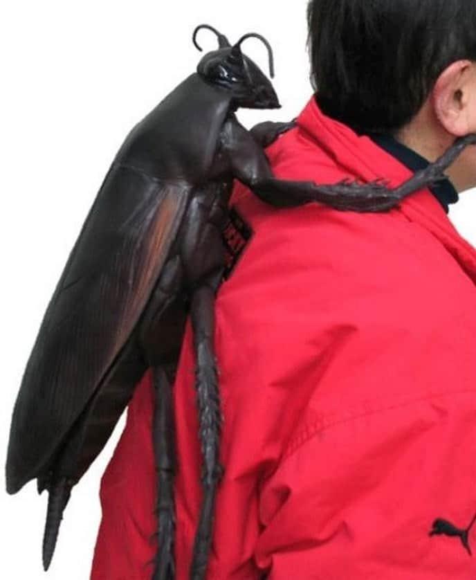 рюкзак в виде таракана