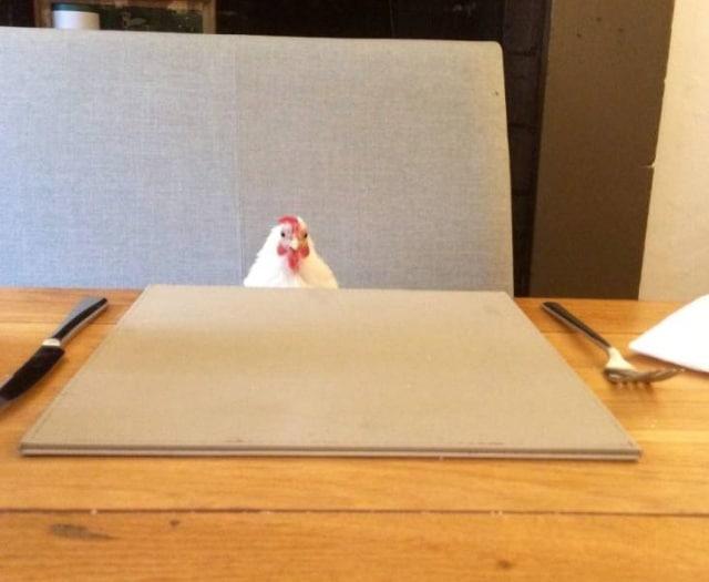 курица в кафе
