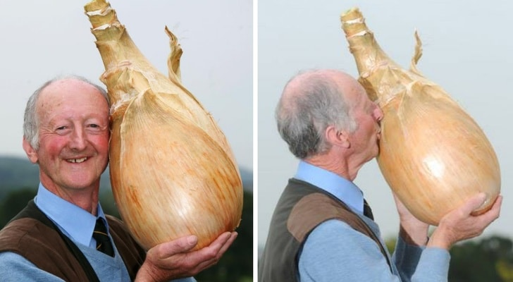 мужчина с огромной луковицей