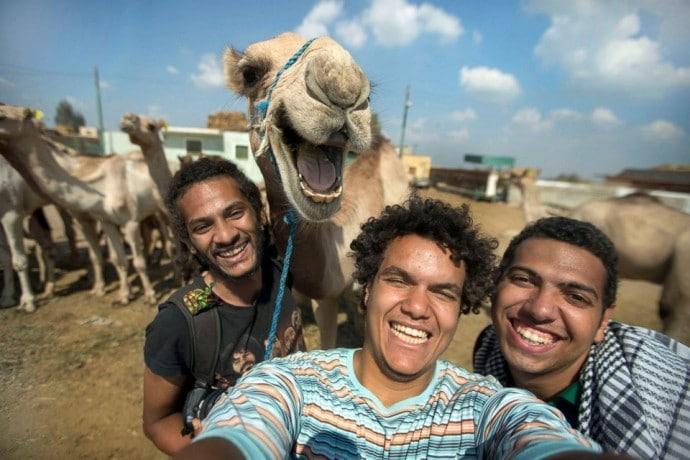 парни фотографируются с верблюдом