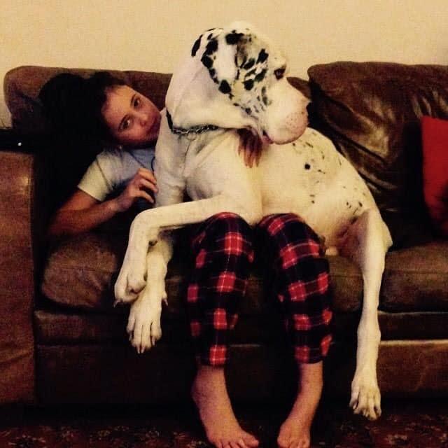 девушка сидит с собакой