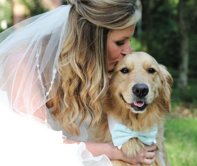 невеста целует собаку