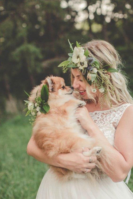 невеста и её питомец